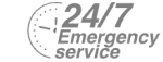 24/7 Emergency Service Pest Control in Peckham, Nunhead, SE15. Call Now! 020 8166 9746